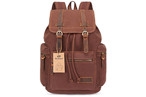 Top 10 Best Leather Backpack Purse in 2017 Reviews