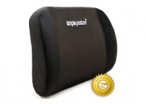 Top Ten Best Back Support For Office Chair Reviews