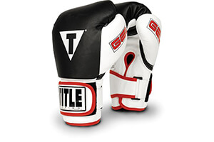 Best Boxing Gloves for Beginners in 2016 Reviews