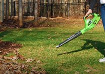 Top 10 Best Cordless Leaf Blowers Reviews
