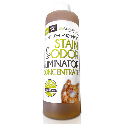 Enzyme Cleaner CONCENTRATE